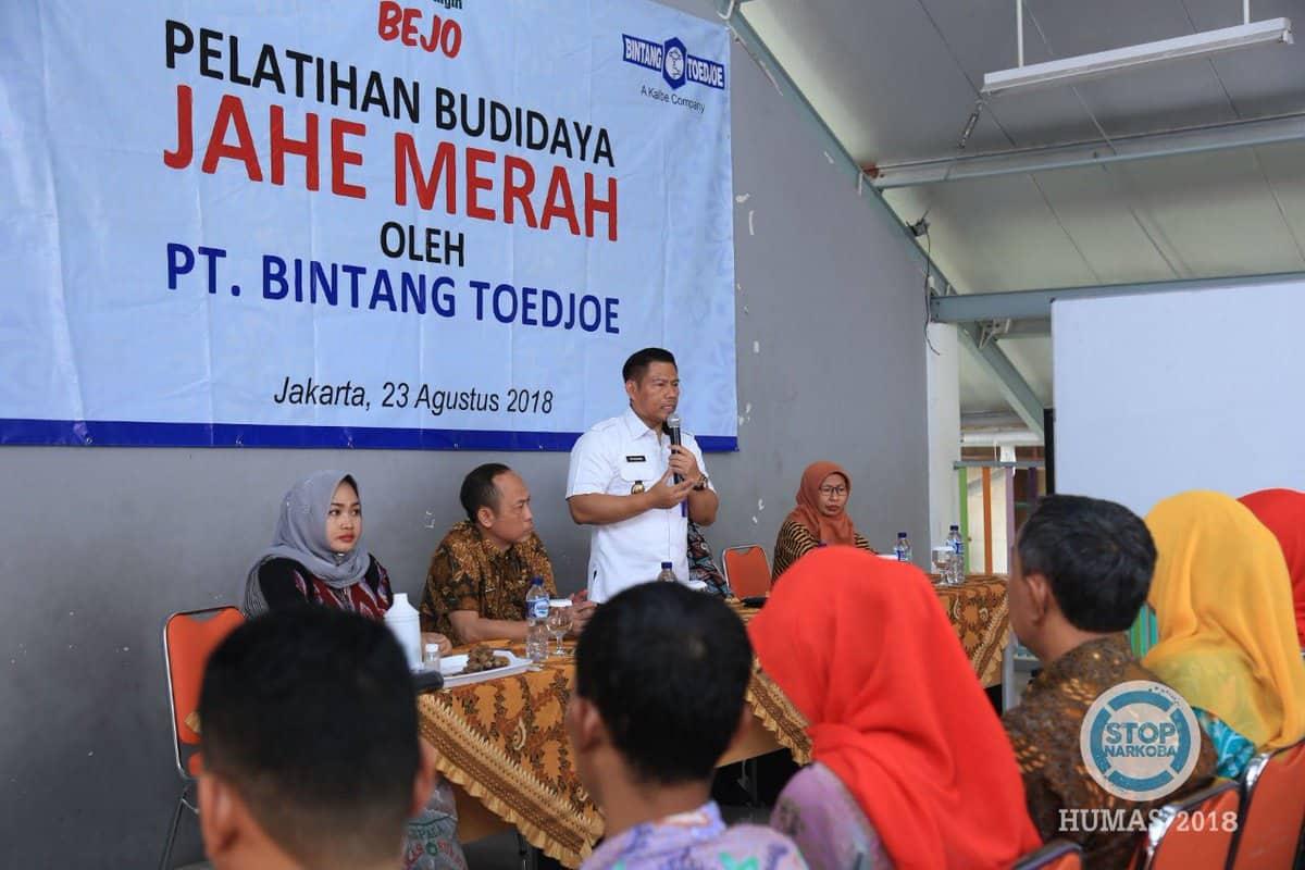 Pelatihan Budi Daya Jahe Merah oleh BNN dan Bintang Toedjoe