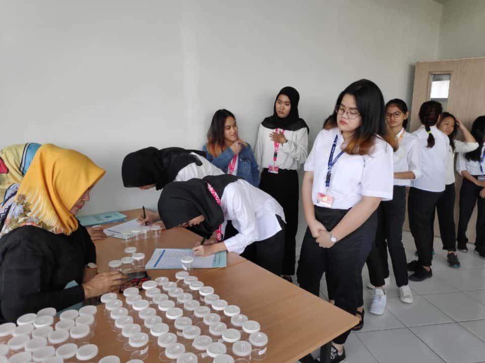 Binus kembali lakukan tes urin bagi mahasiswanya