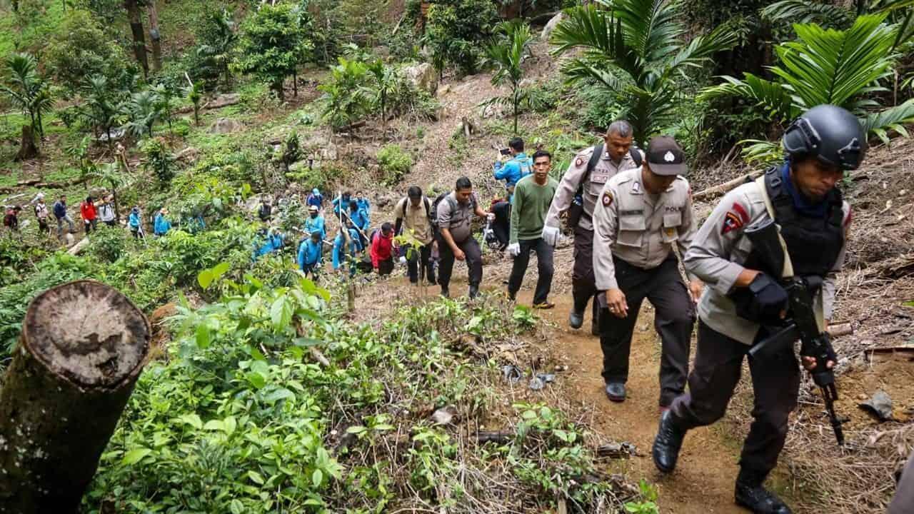 BNN Temukan Tiga Titik Ladang Ganja di Kawasan Hutan Lindung Aceh