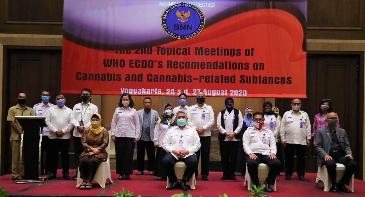 BNN RI Ikuti 2nd Tropical Meeting On WHO – ECDD Bahas Rekomendasi Tentang Ganja