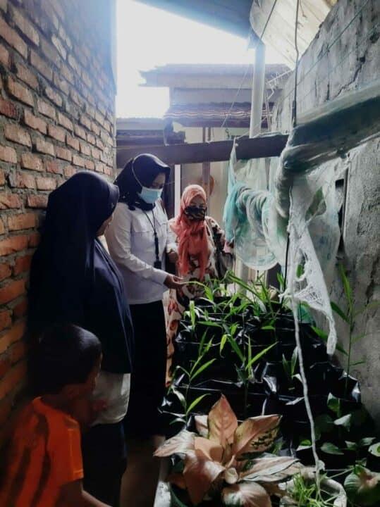 Rangkaian Supervisi Program Pemberdayaan Alternatif di Provinsi Sumut