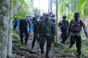 KEPALA BNN RI PIMPIN PEMUSNAHAN 9 HEKTAR LADANG GANJA Di Aceh Utara