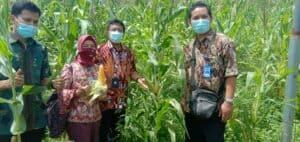GDAD BNN melakukan Harmonisasi Program GDAD di Kabupaten Aceh Besar